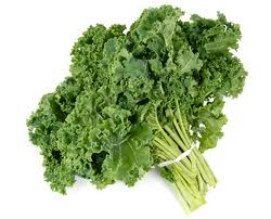Kale Stands Above All The Other Green Vegetables